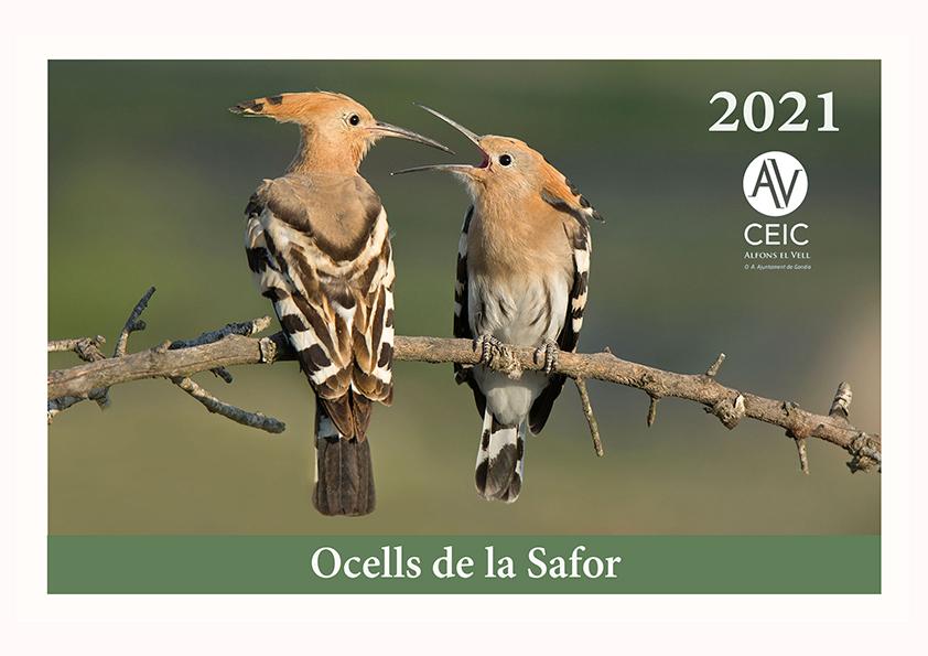CALENDARI DEL CEIC 2021, «OCELLS DE LA SAFOR»